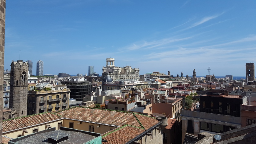The view from the roof of the cathedral