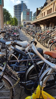 Bikes. Everywhere. Bikes.