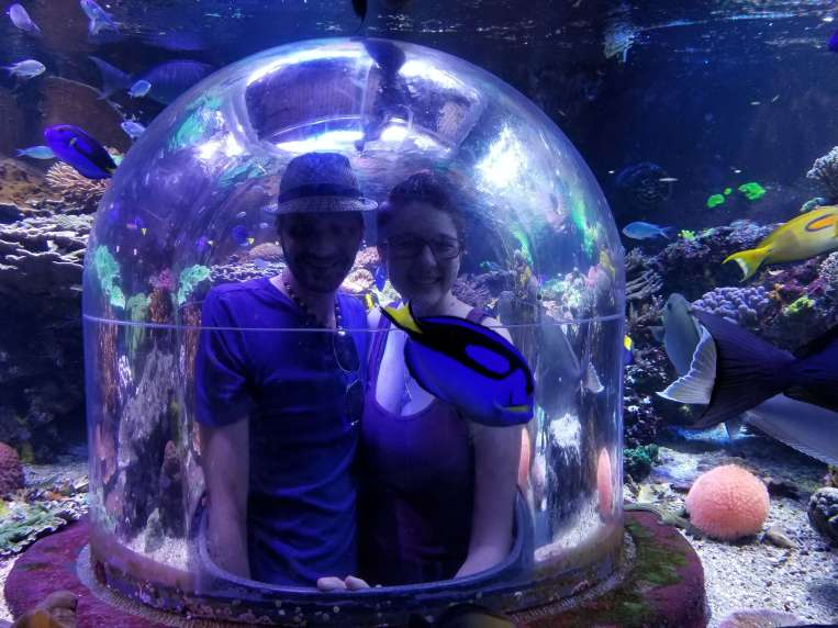 The aquarium!